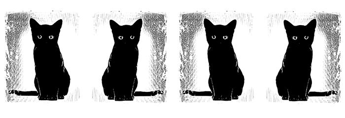07 Koty Kubek z Kotami Pracownia Fotograficzna Królewska 7 Wzór