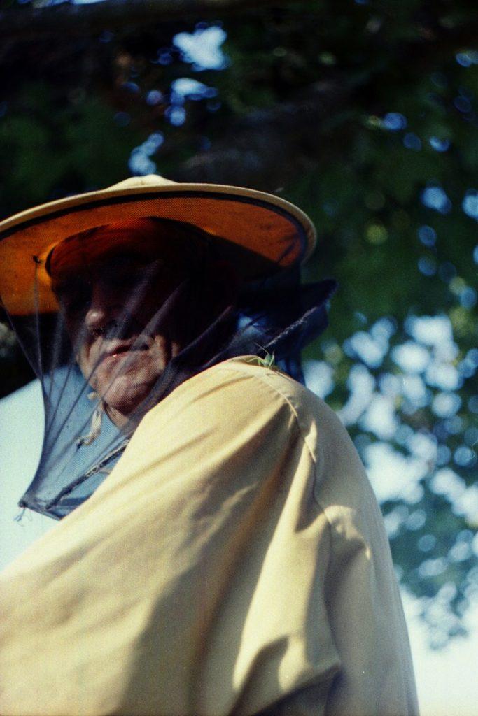 Pszczoły Pszczoła Pasieka Micuda (12)