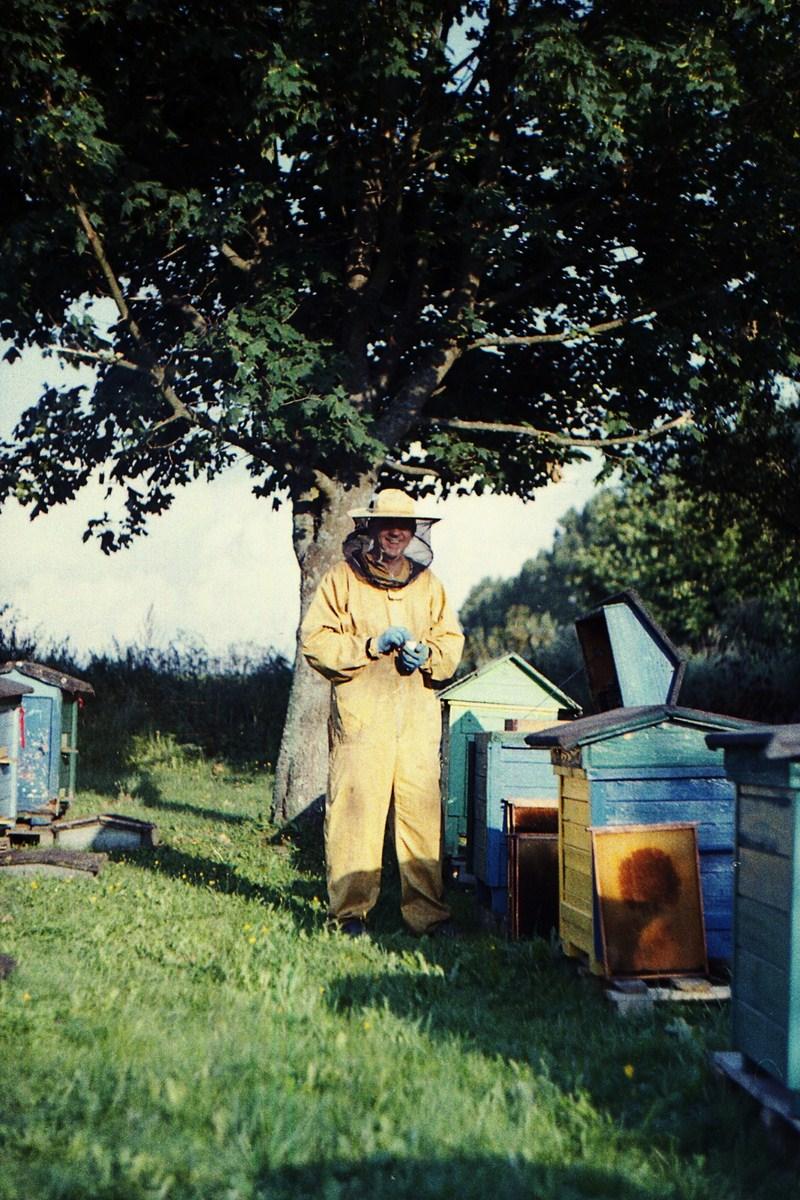Pszczoły Pszczoła Pasieka Micuda (6)