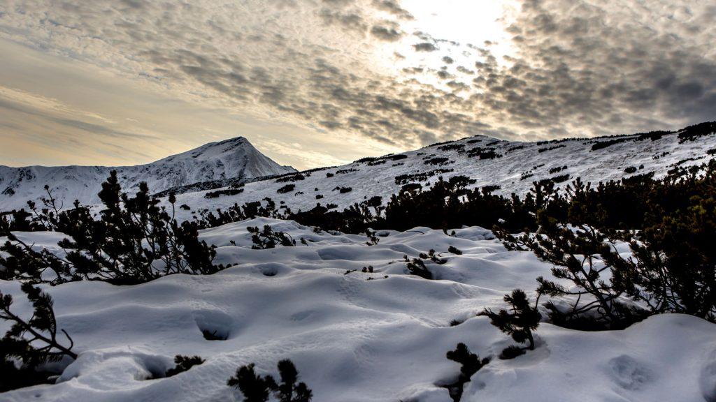 tatry ornak starorobociański 06 Pracownia Fotograficzna Micuda