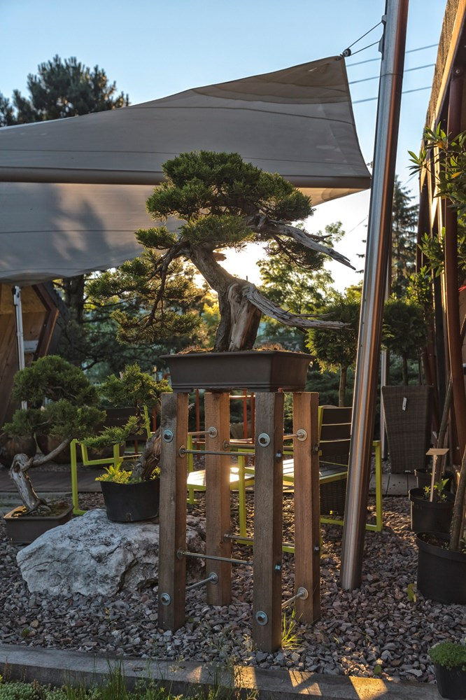 Fotografia Ogrodów Garden Pro Pracownia Fotograficzna Micuda (20)
