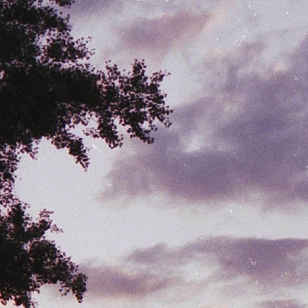 Usuwanie pyłków Fotograf zdjęcia analogowe Film kolorowy